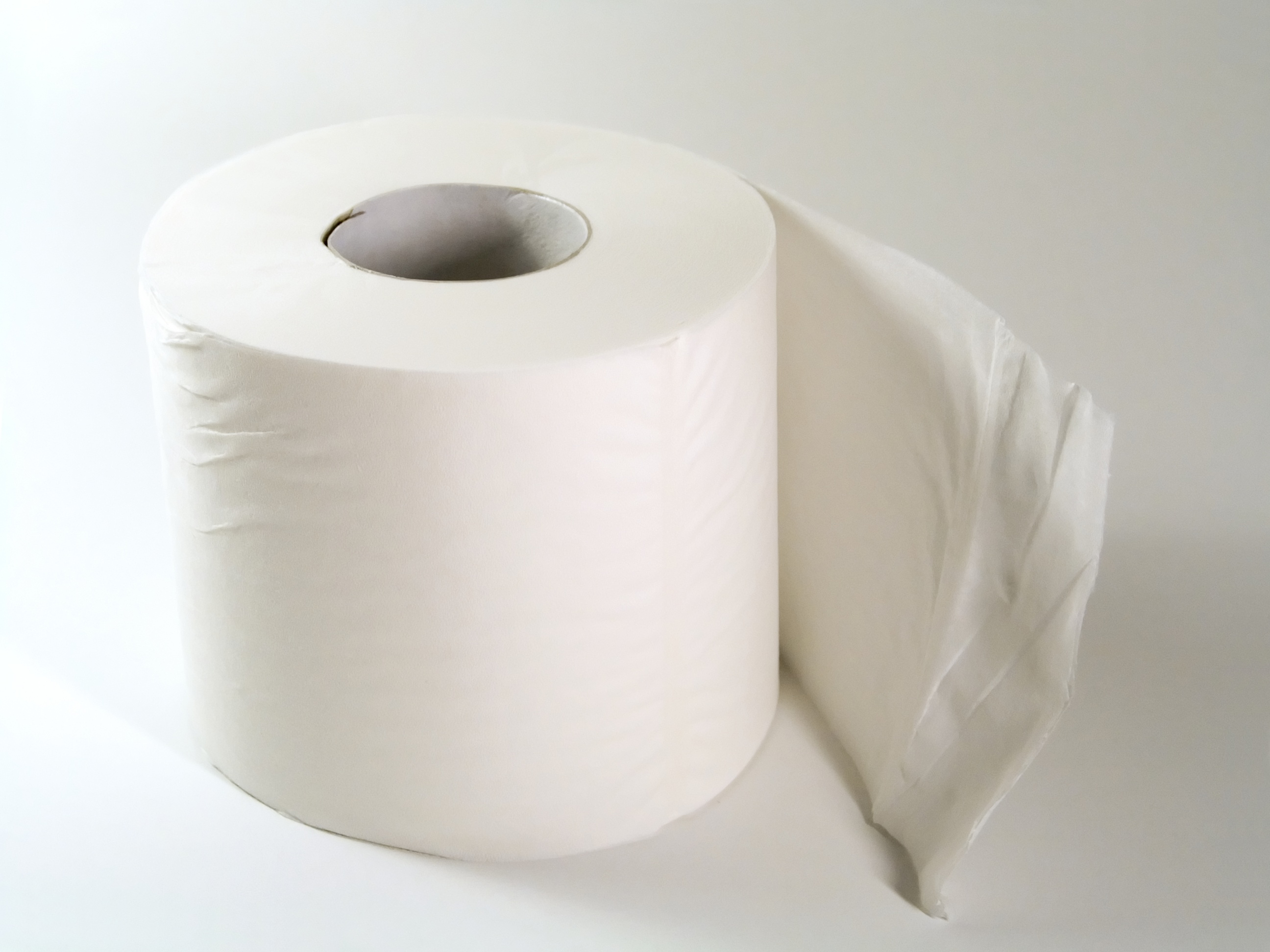 Top 10 Fascinating Facts About Toilet Paper