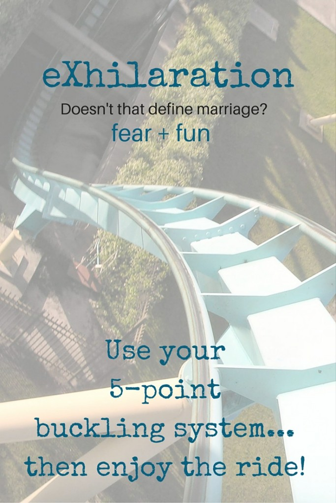 eXhilaration - doesn't that define marriage - use your 5-point buckling system and enjoy the ride